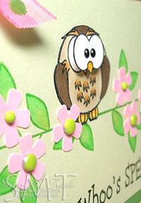 Owl_cls