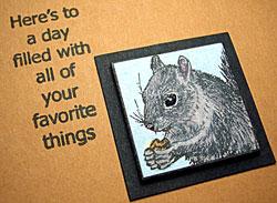 Squirrel-web